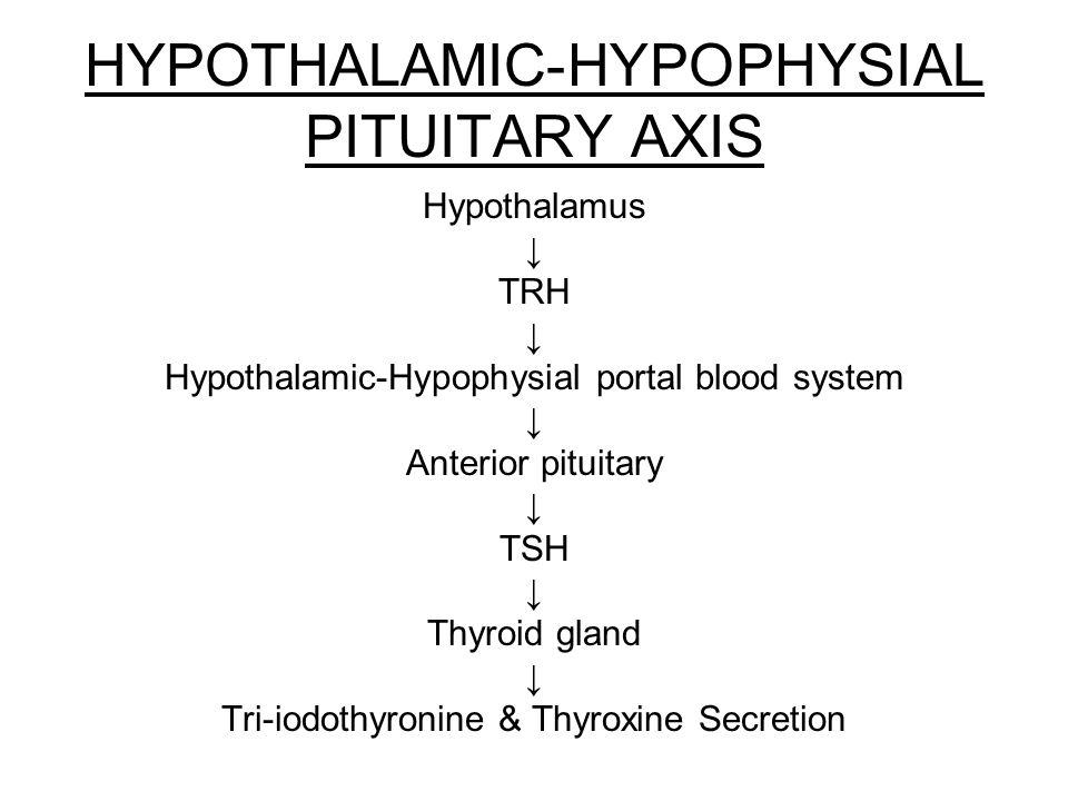 azithromycin canada
