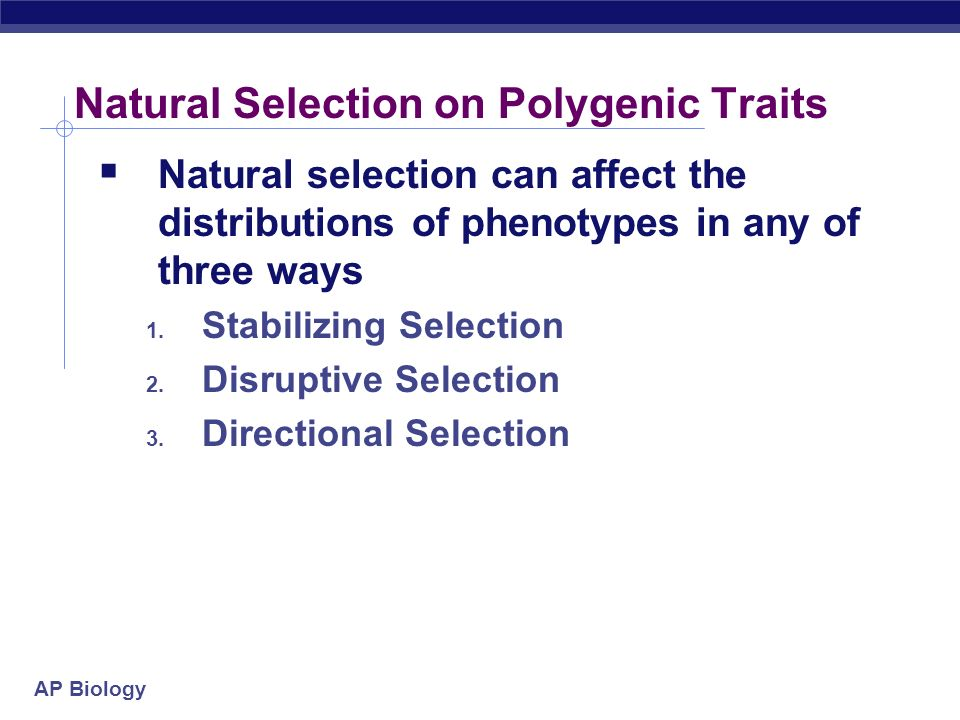 AP Biology Natural Selection on Single Gene Trait  Natural selection on single gene traits can lead to changes in allele frequencies and thus to evolution  i.e.