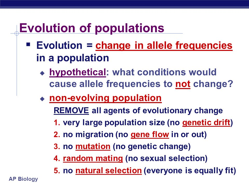 AP Biology Variation & Gene Pool  allele frequency is the number of times that the allele occurs in the population  how many A vs a in whole population  Expressed in percentage (%)  i.e.