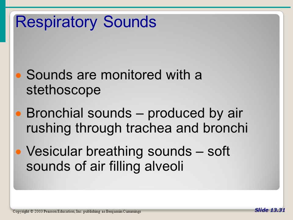 Slide Respiratory Sounds Copyright © 2003 Pearson Education, Inc.