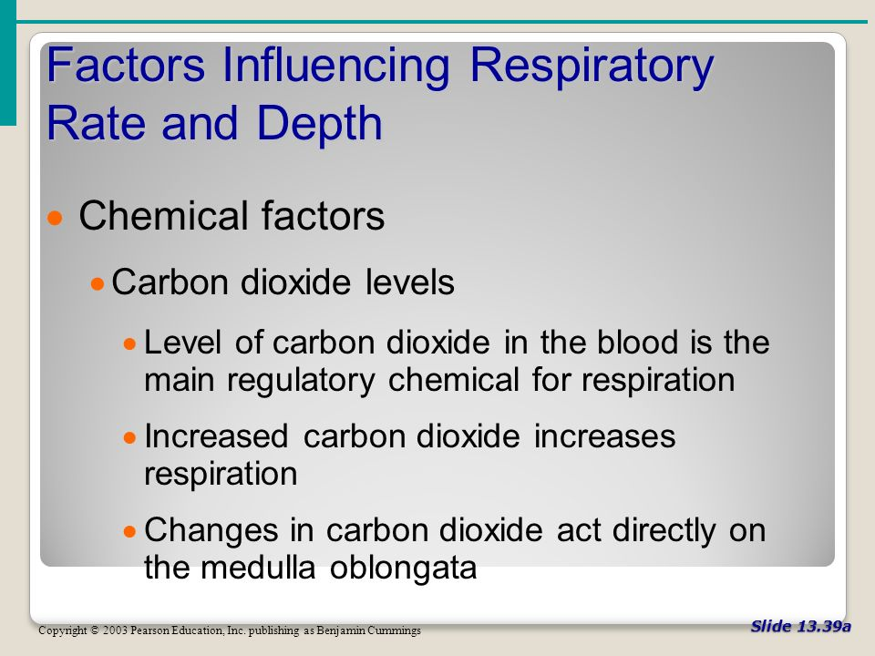 Slide 13.39a Factors Influencing Respiratory Rate and Depth Copyright © 2003 Pearson Education, Inc.
