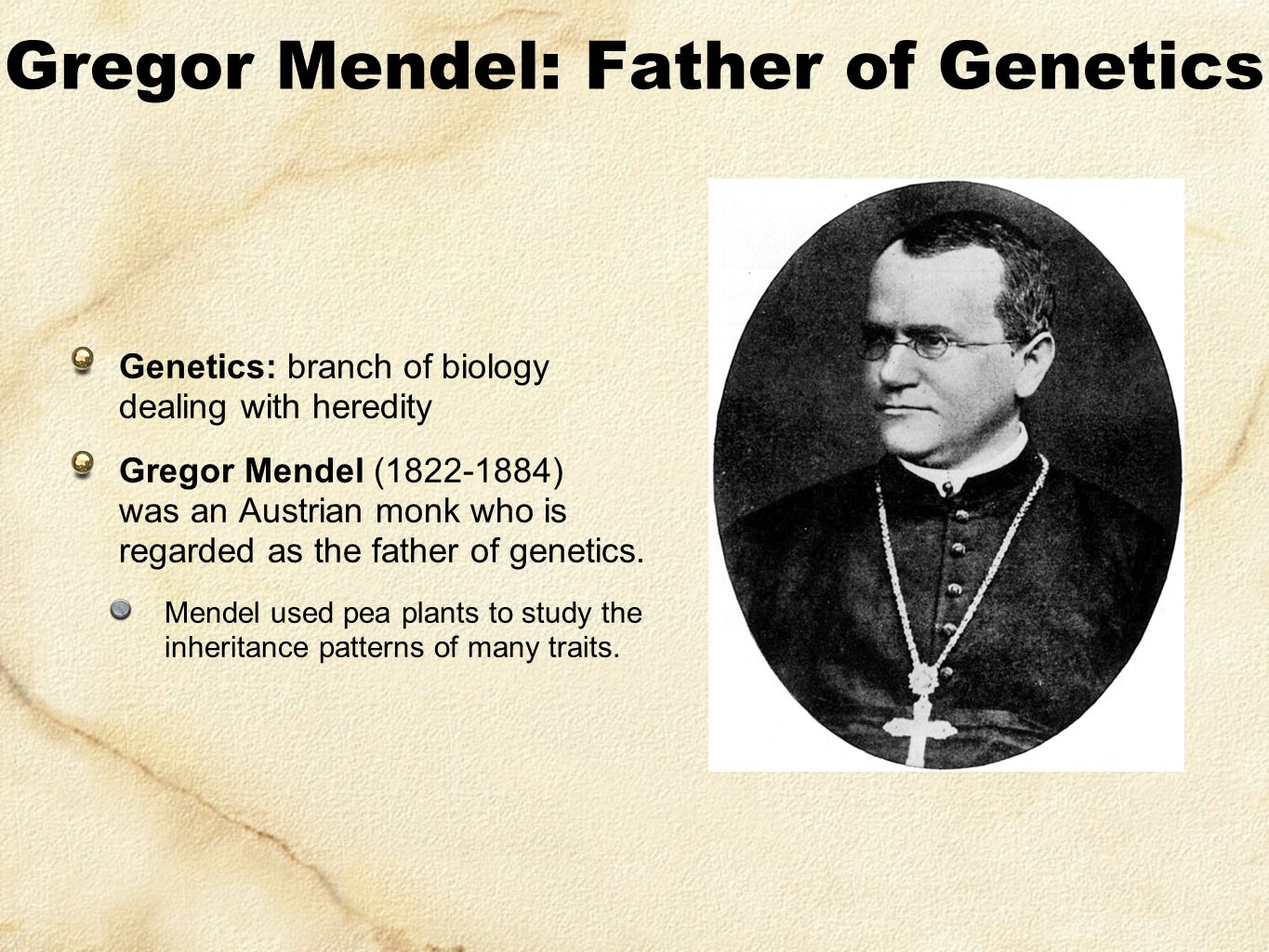 gregor mendel the father of genetics Gregor mendel is known as the father of genetics because of his breakthrough in the laws of inheritance he is the person who came up with the laws of inheritance, and how hereditary affects various generations even today, these basic principles are used in the most complicated genetic researches.