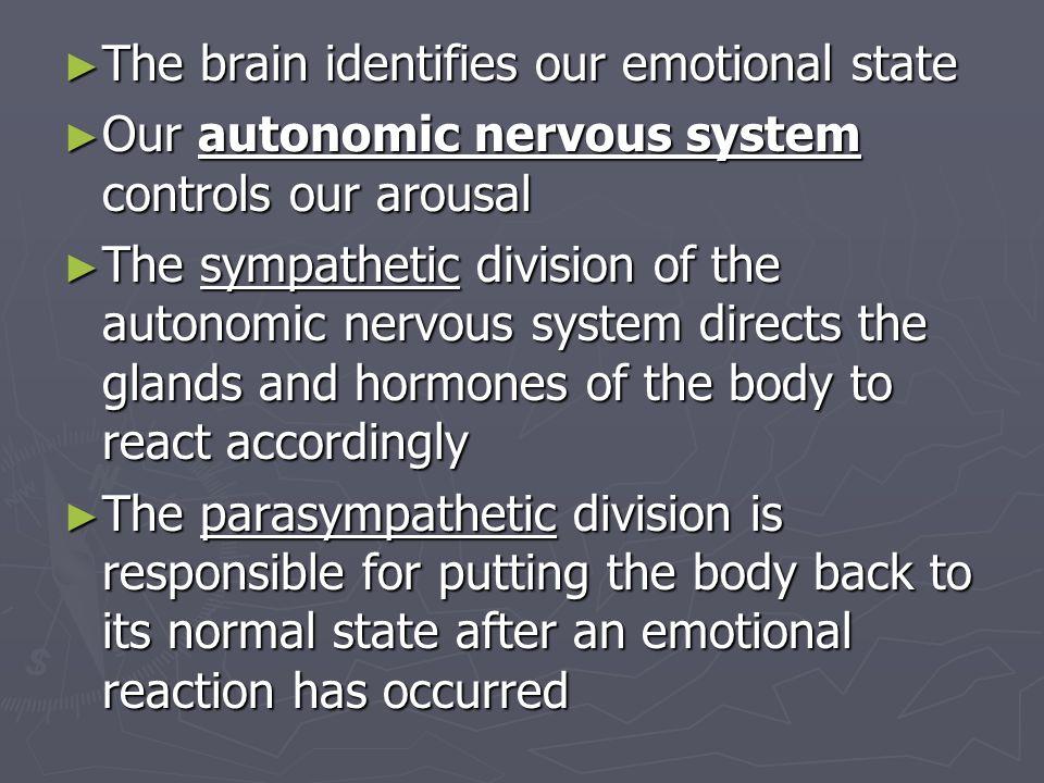 Definition sympathetic arousal