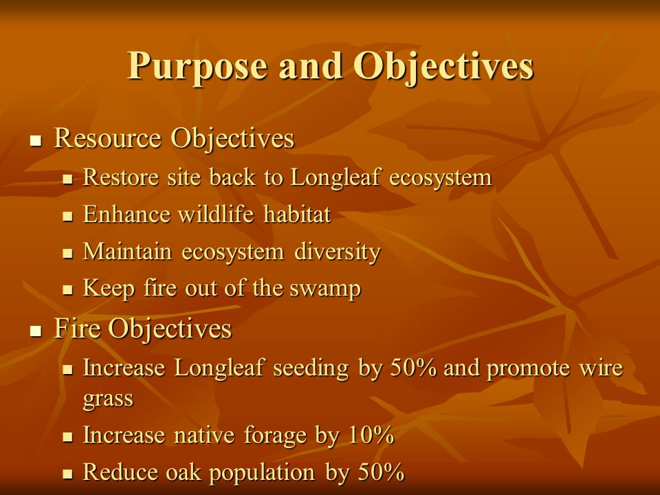 Purpose and Objectives Resource Objectives Resource Objectives Restore site back to Longleaf ecosystem Restore site back to Longleaf ecosystem Enhance wildlife habitat Enhance wildlife habitat Maintain ecosystem diversity Maintain ecosystem diversity Keep fire out of the swamp Keep fire out of the swamp Fire Objectives Fire Objectives Increase Longleaf seeding by 50% and promote wire grass Increase Longleaf seeding by 50% and promote wire grass Increase native forage by 10% Increase native forage by 10% Reduce oak population by 50% Reduce oak population by 50%