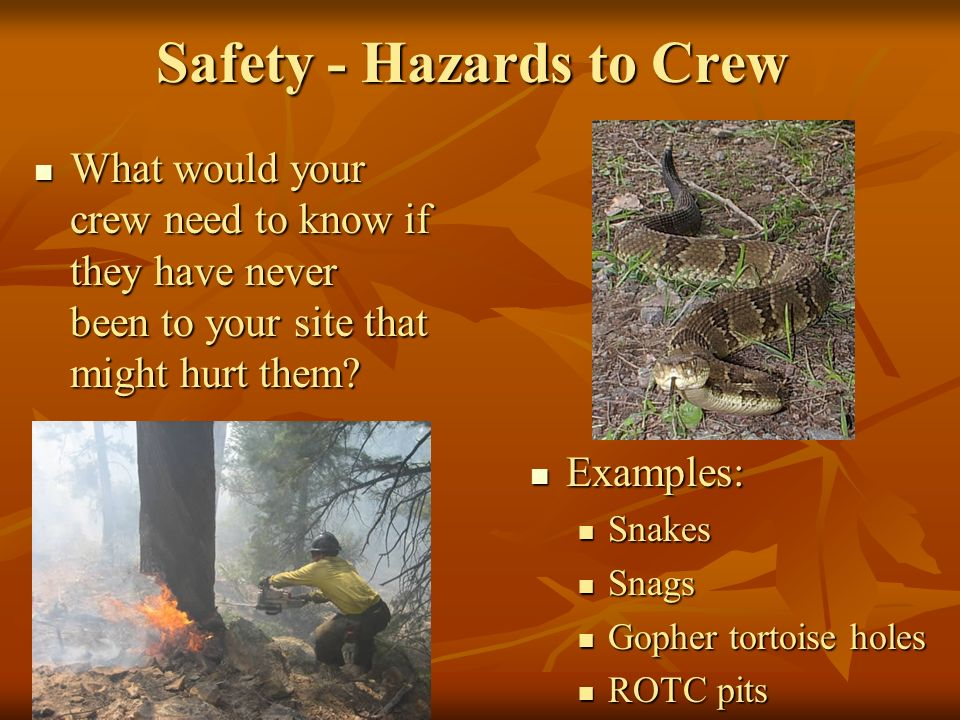 Safety - Hazards to Crew What would your crew need to know if they have never been to your site that might hurt them.