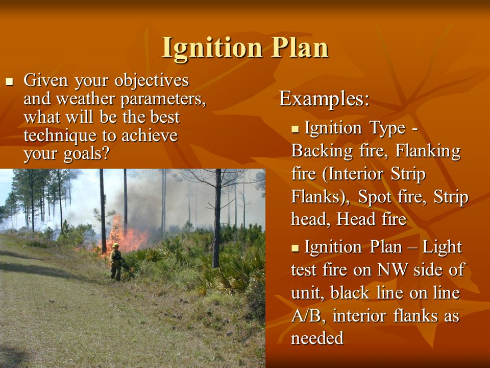 Ignition Plan Given your objectives and weather parameters, what will be the best technique to achieve your goals.