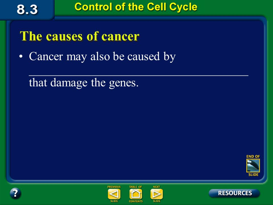 Section 8.3 Summary – pages The causes of cancer Environmental factors, such as__________________ ___________________ ___________________ ___________________ _________________ are all known to damage the genes that control the cell cycle.
