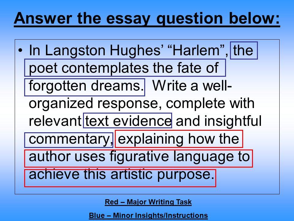 Graduate Admissions Essay Example