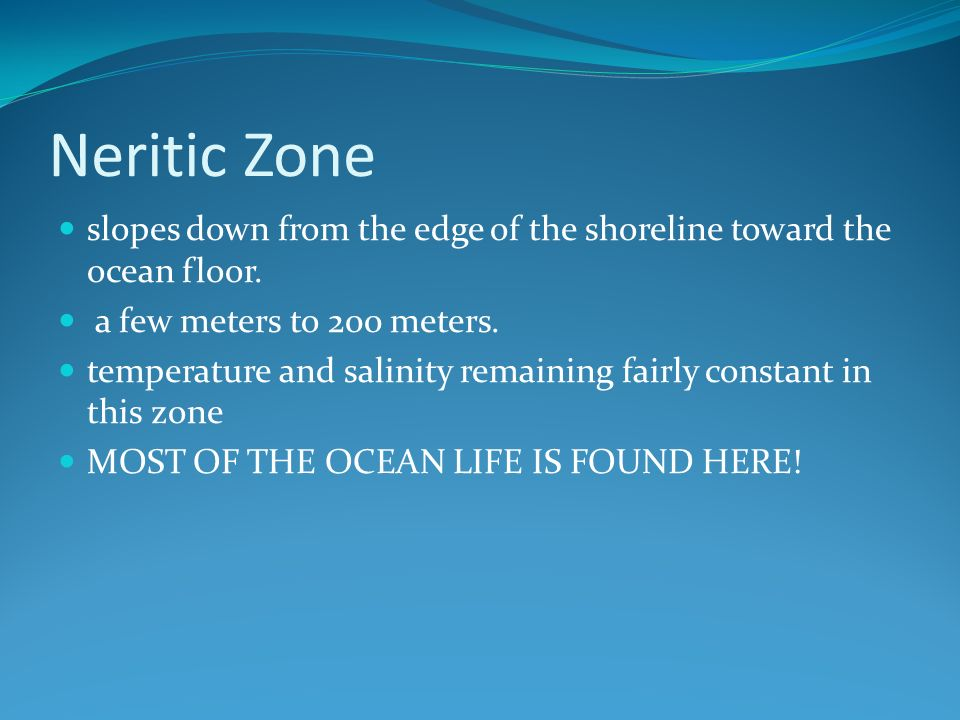 Neritic Zone slopes down from the edge of the shoreline toward the ocean floor.