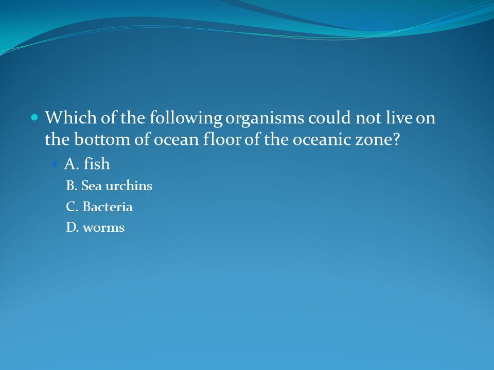 Which of the following organisms could not live on the bottom of ocean floor of the oceanic zone.