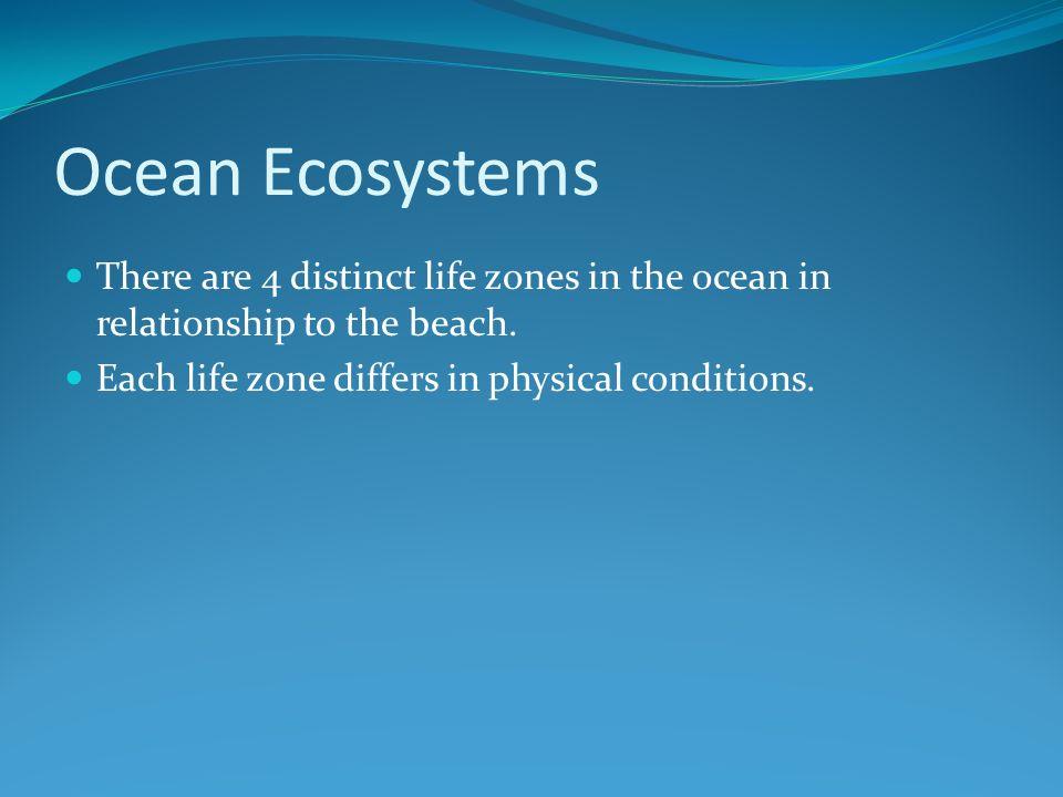 Oceanic Zone open waters of the ocean.