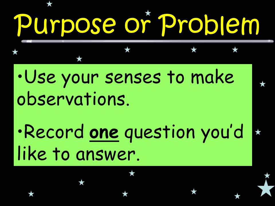 Use your senses to make observations. Record one question you'd like to answer.