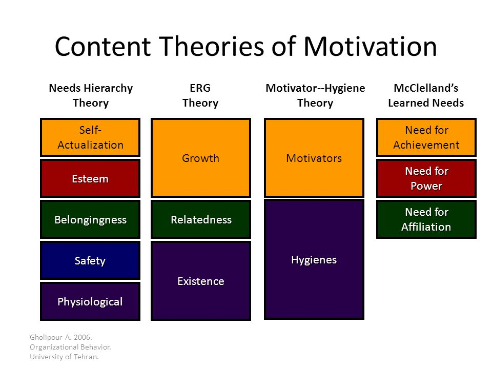 motivation behavior theory Essay on motivation theories this analysis of coca-cola's blog will focus on cognitive behavior and on motivation theories in analyzing the effectiveness of this.