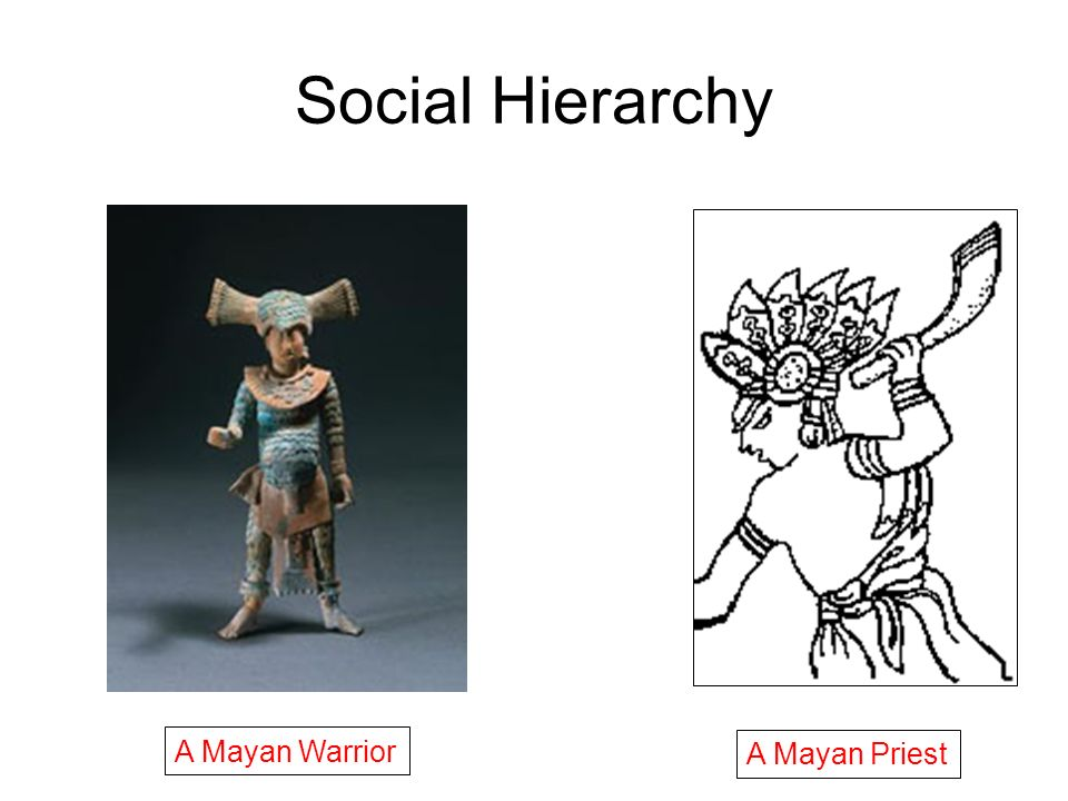 Social Hierarchy A Mayan Priest A Mayan Warrior
