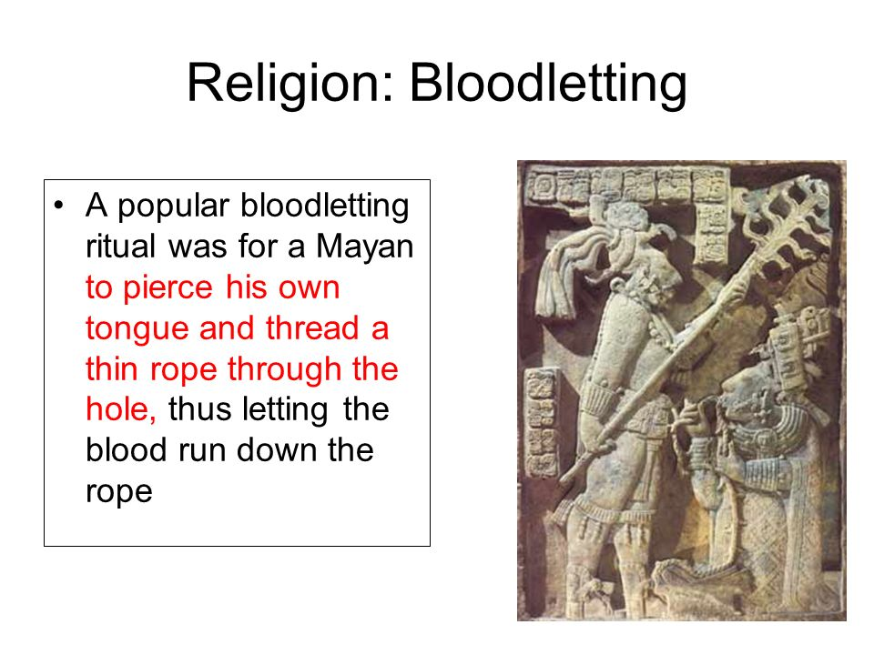 Religion: Bloodletting A popular bloodletting ritual was for a Mayan to pierce his own tongue and thread a thin rope through the hole, thus letting the blood run down the rope