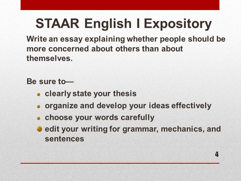 Explanatory Essay Format