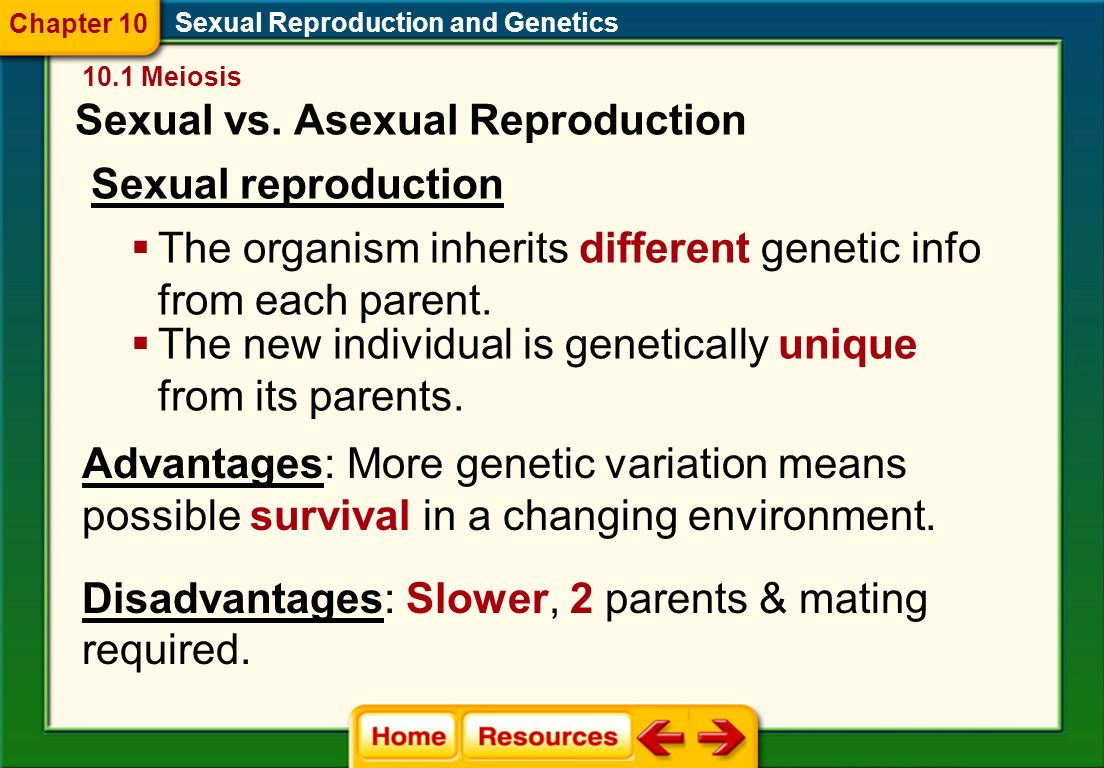 Sexual Reproduction and Genetics Sexual vs.