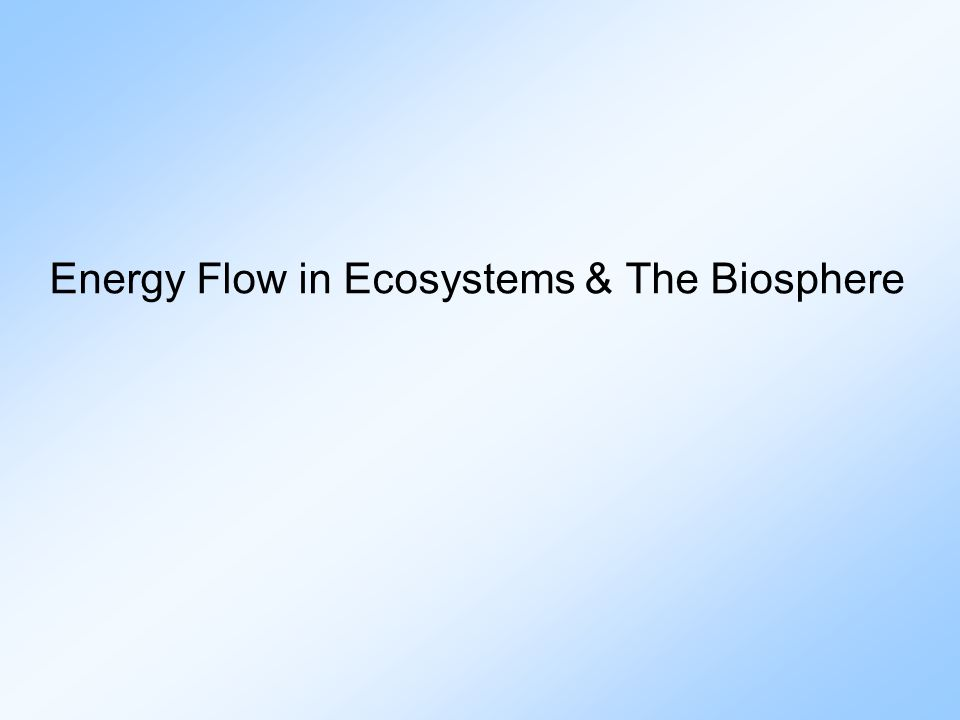 Energy Flow in Ecosystems & The Biosphere