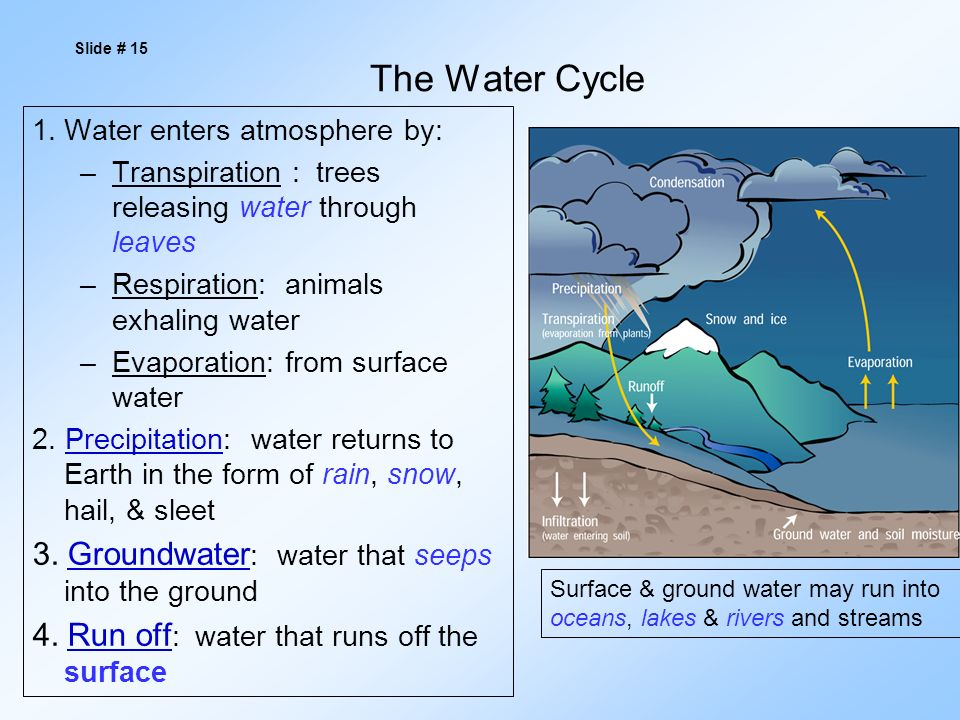 The Water Cycle 1.Water enters atmosphere by: –Transpiration : trees releasing water through leaves –Respiration: animals exhaling water –Evaporation: from surface water 2.