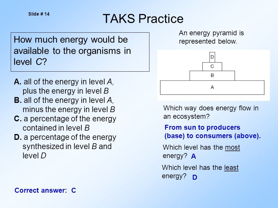 TAKS Practice How much energy would be available to the organisms in level C.