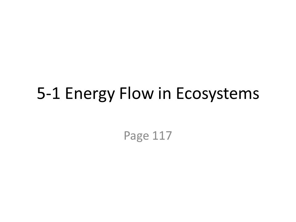 5-1 Energy Flow in Ecosystems Page 117