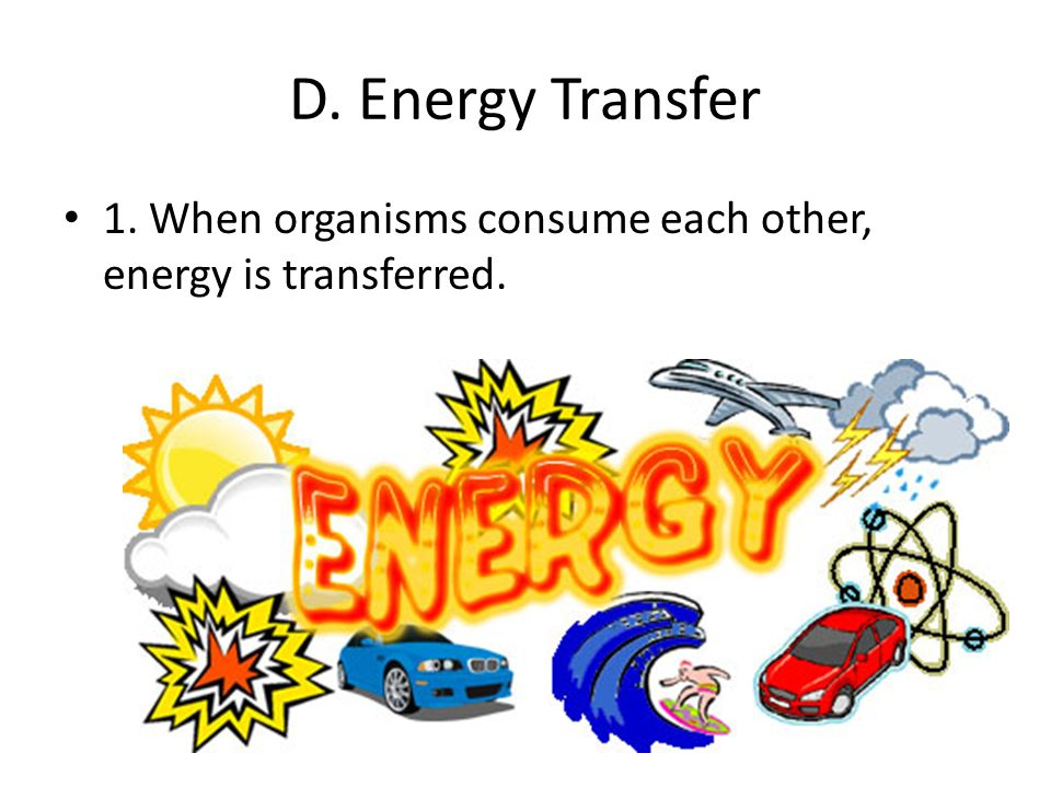 D. Energy Transfer 1. When organisms consume each other, energy is transferred.