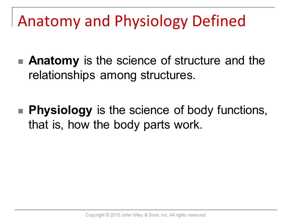 Groß Anatomy And Physiology Gerard Tortora Bilder - Menschliche ...