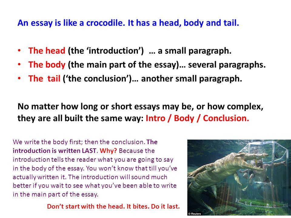 Essay On Life