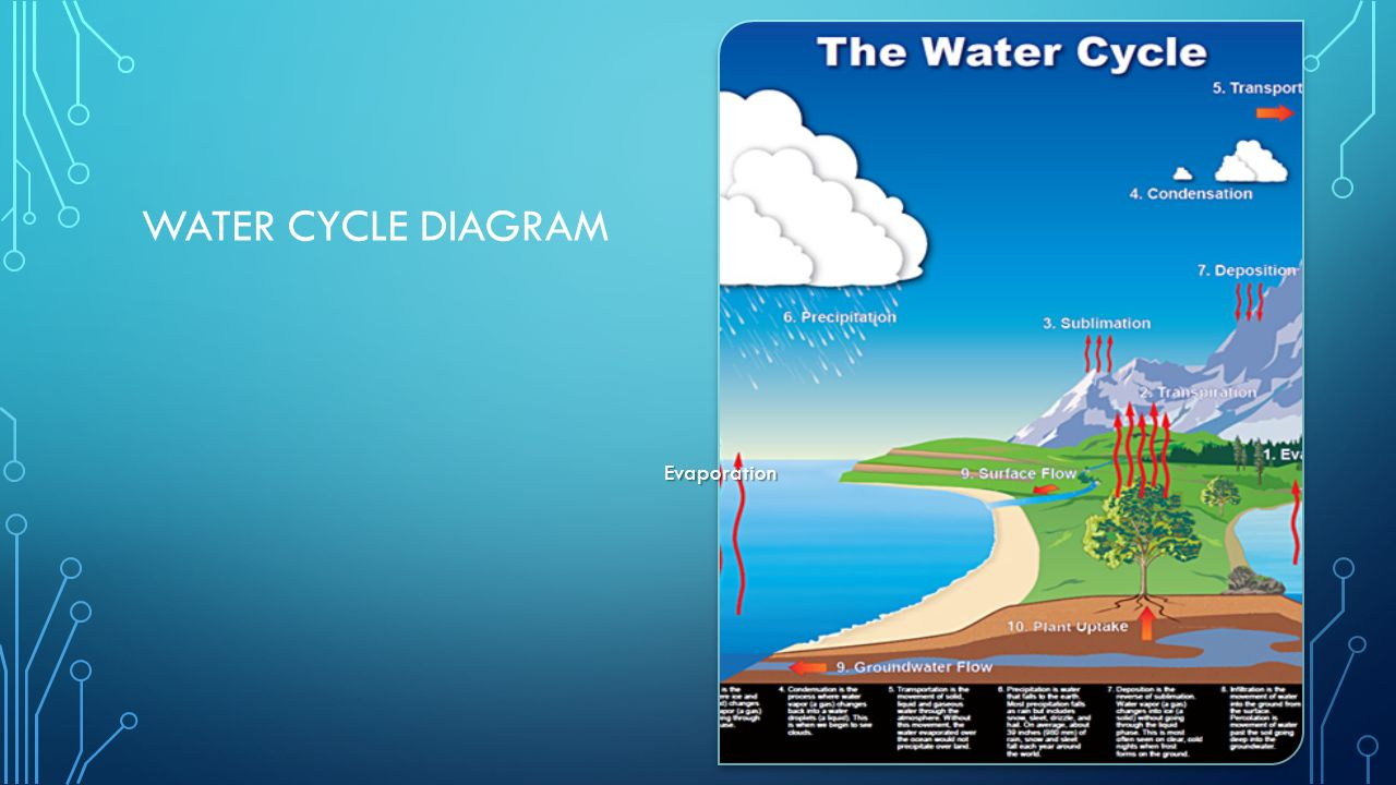 the water cycle 3 essay Water cycle essay the water cycle is in conclusion, every step in the water cycle is extremely important but the three main steps include evaporation.