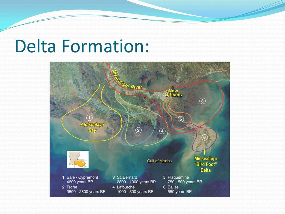 Delta Formation: