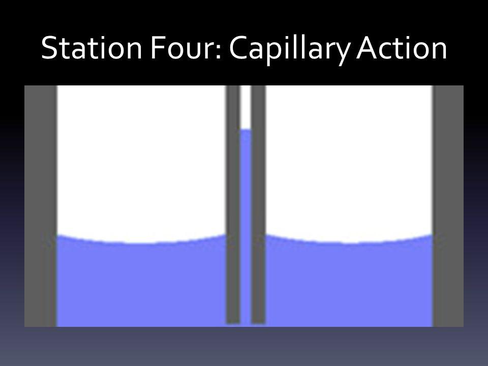 Station Four: Capillary Action