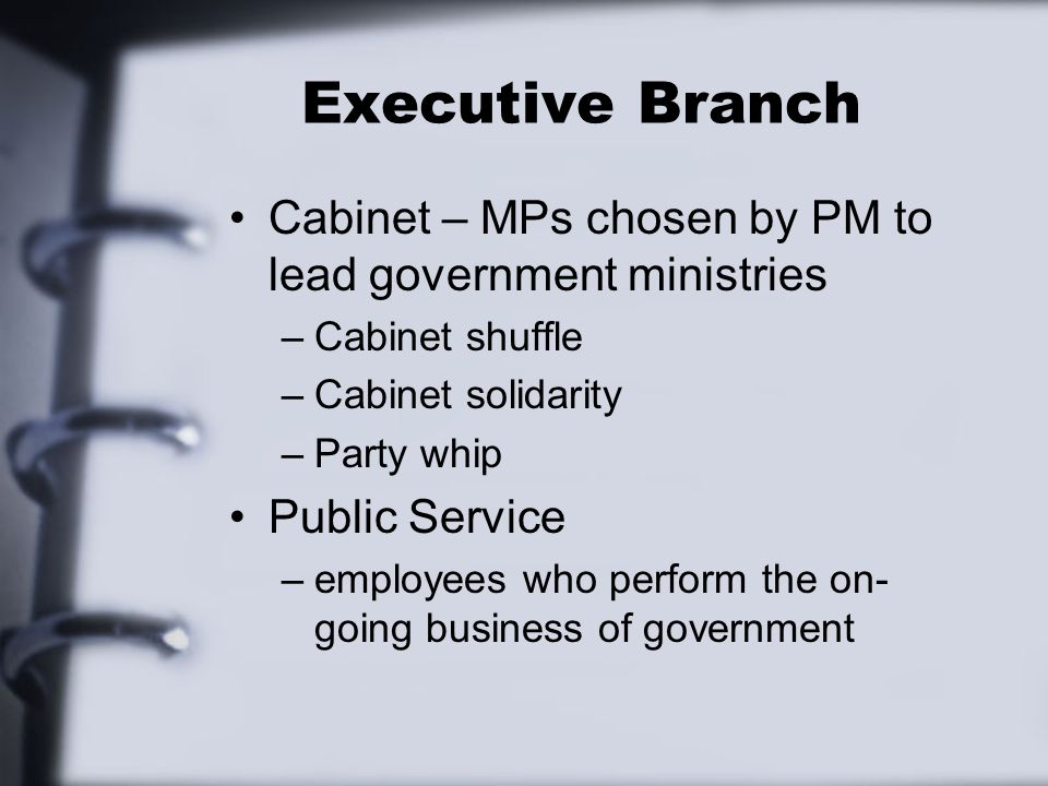 Executive Branch Cabinet – MPs chosen by PM to lead government ministries –Cabinet shuffle –Cabinet solidarity –Party whip Public Service –employees who perform the on- going business of government