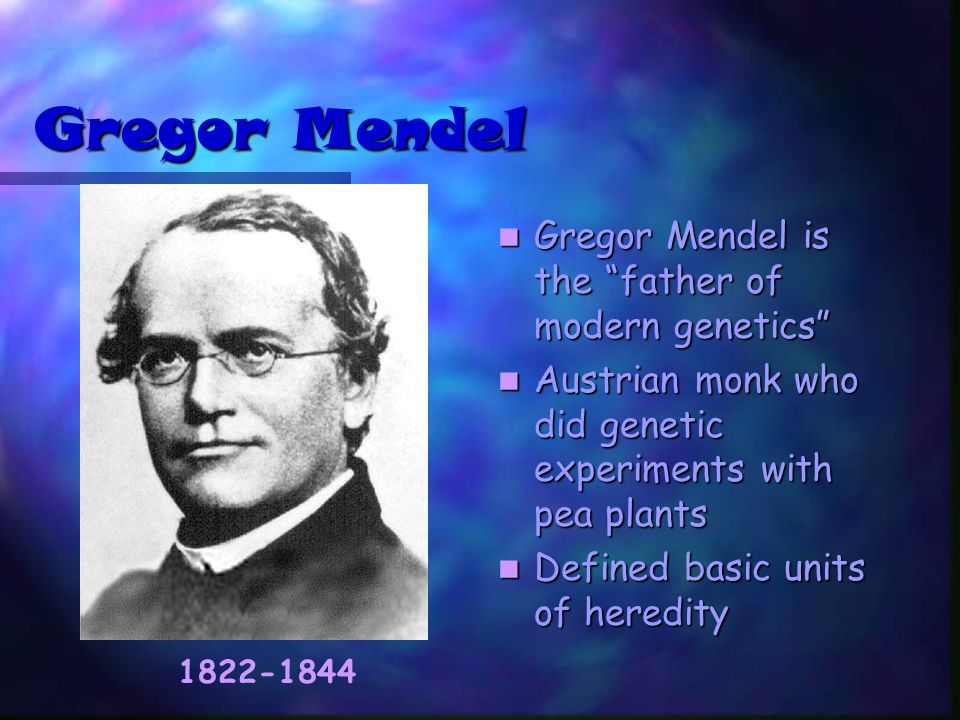 an essay on the theories of gregor mendel Describe the contribution charles darwin, august weismann, gregor mendel and frances crick have made to the study of genetics - essay example.