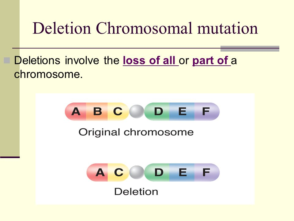 Deletion Chromosomal mutation Deletions involve the loss of all or part of a chromosome.