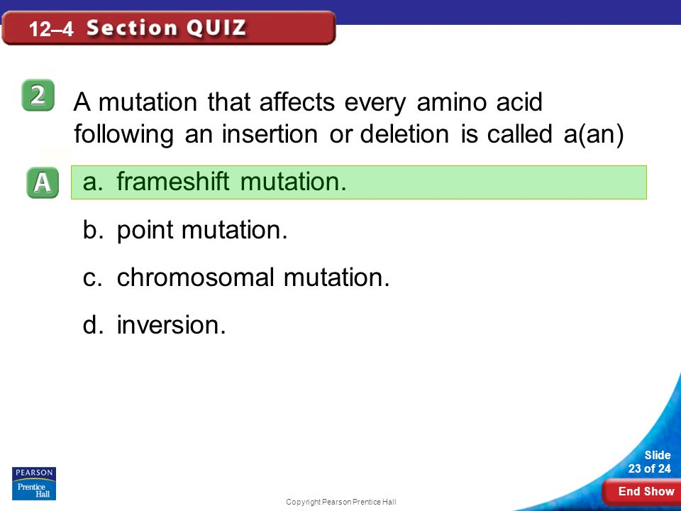 End Show Slide 23 of 24 Copyright Pearson Prentice Hall 12–4 A mutation that affects every amino acid following an insertion or deletion is called a(an) a.frameshift mutation.
