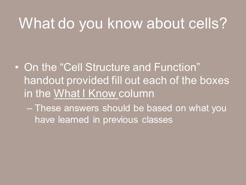 about cells essay