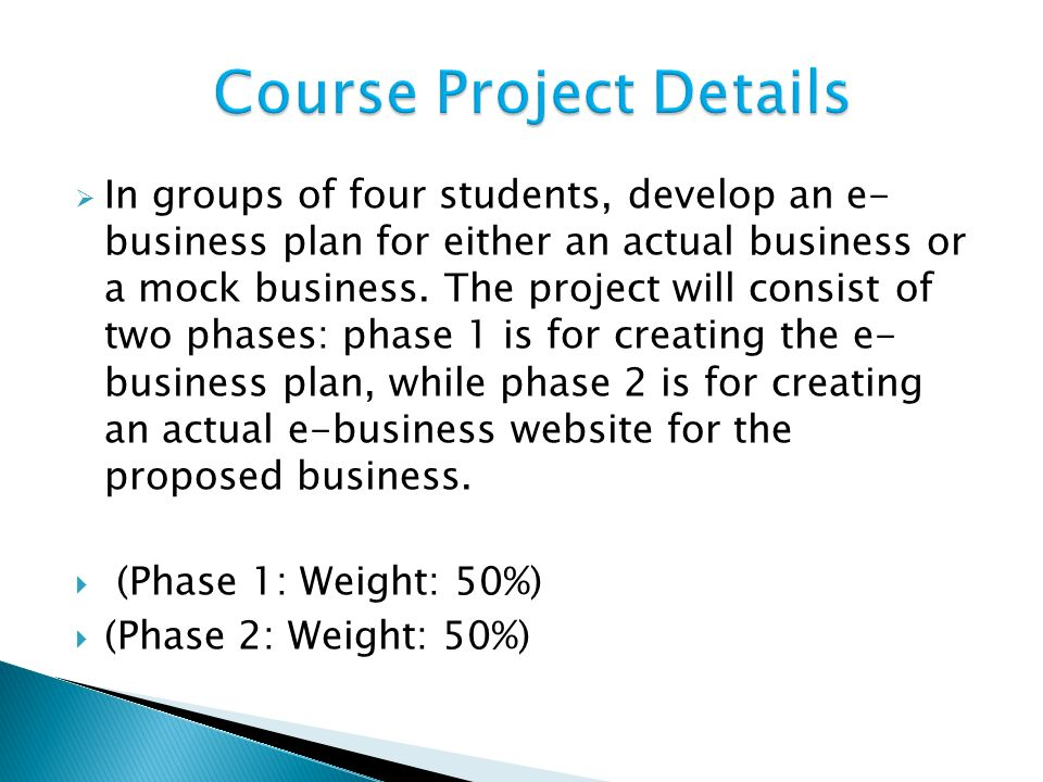  In groups of four students, develop an e- business plan for either an actual business or a mock business.