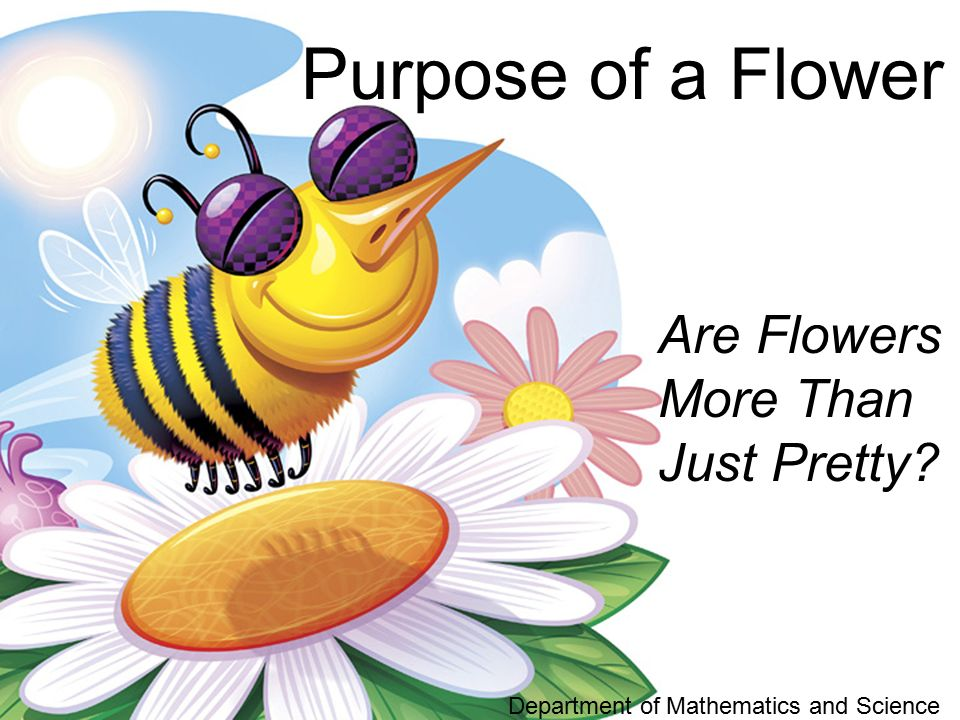 Purpose of a Flower Are Flowers More Than Just Pretty Department of Mathematics and Science