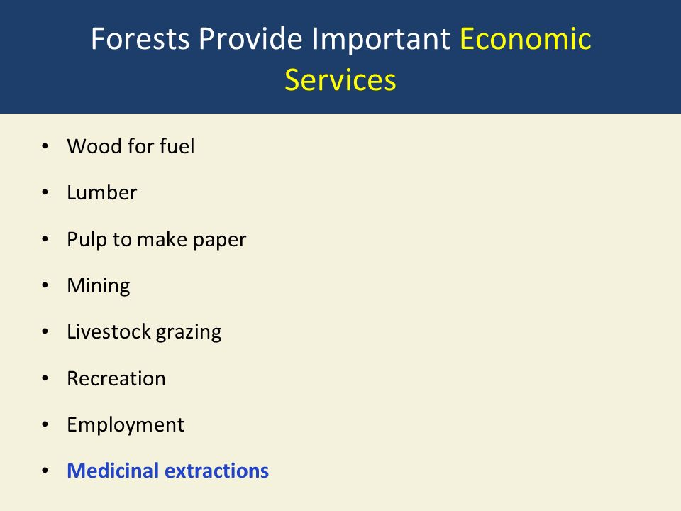 Forests Provide Important Economic Services Wood for fuel Lumber Pulp to make paper Mining Livestock grazing Recreation Employment Medicinal extractions