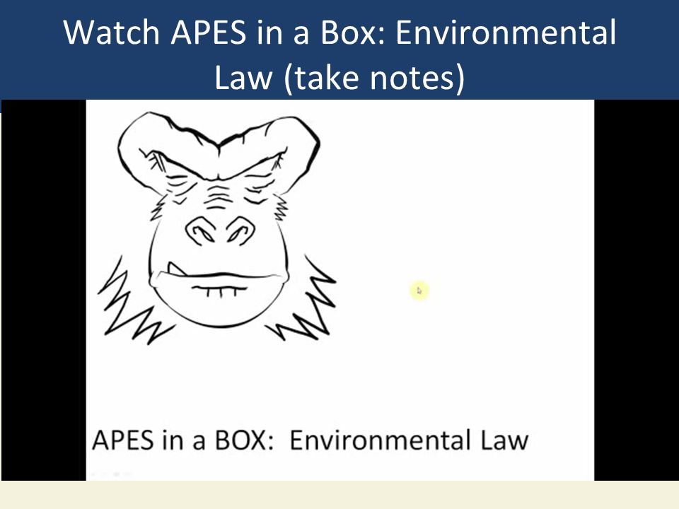 Watch APES in a Box: Environmental Law (take notes)