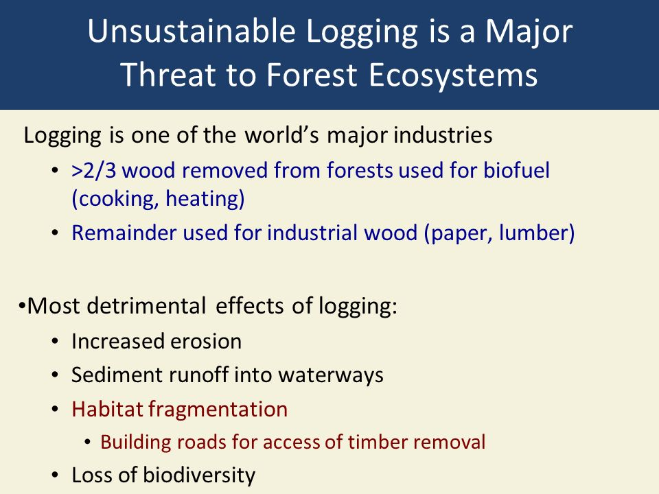 Unsustainable Logging is a Major Threat to Forest Ecosystems Logging is one of the world's major industries >2/3 wood removed from forests used for biofuel (cooking, heating) Remainder used for industrial wood (paper, lumber) Most detrimental effects of logging: Increased erosion Sediment runoff into waterways Habitat fragmentation Building roads for access of timber removal Loss of biodiversity