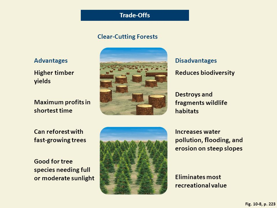 Trade-Offs Clear-Cutting Forests AdvantagesDisadvantages Higher timber yields Reduces biodiversity Destroys and fragments wildlife habitats Maximum profits in shortest time Can reforest with fast-growing trees Increases water pollution, fl ooding, and erosion on steep slopes Good for tree species needing full or moderate sunlight Eliminates most recreational value