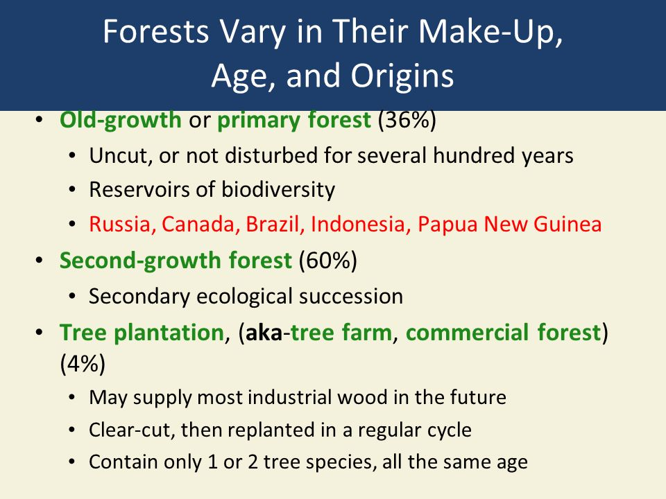 Forests Vary in Their Make-Up, Age, and Origins Old-growth or primary forest (36%) Uncut, or not disturbed for several hundred years Reservoirs of biodiversity Russia, Canada, Brazil, Indonesia, Papua New Guinea Second-growth forest (60%) Secondary ecological succession Tree plantation, (aka-tree farm, commercial forest) (4%) May supply most industrial wood in the future Clear-cut, then replanted in a regular cycle Contain only 1 or 2 tree species, all the same age