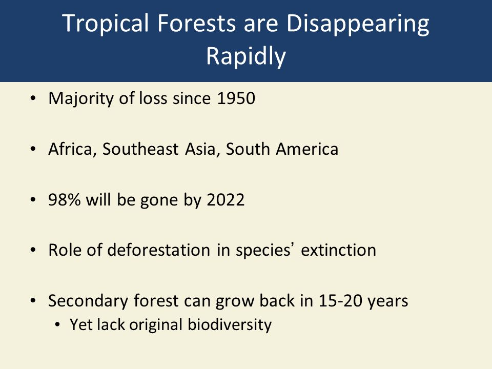 Tropical Forests are Disappearing Rapidly Majority of loss since 1950 Africa, Southeast Asia, South America 98% will be gone by 2022 Role of deforestation in species' extinction Secondary forest can grow back in 15-20 years Yet lack original biodiversity