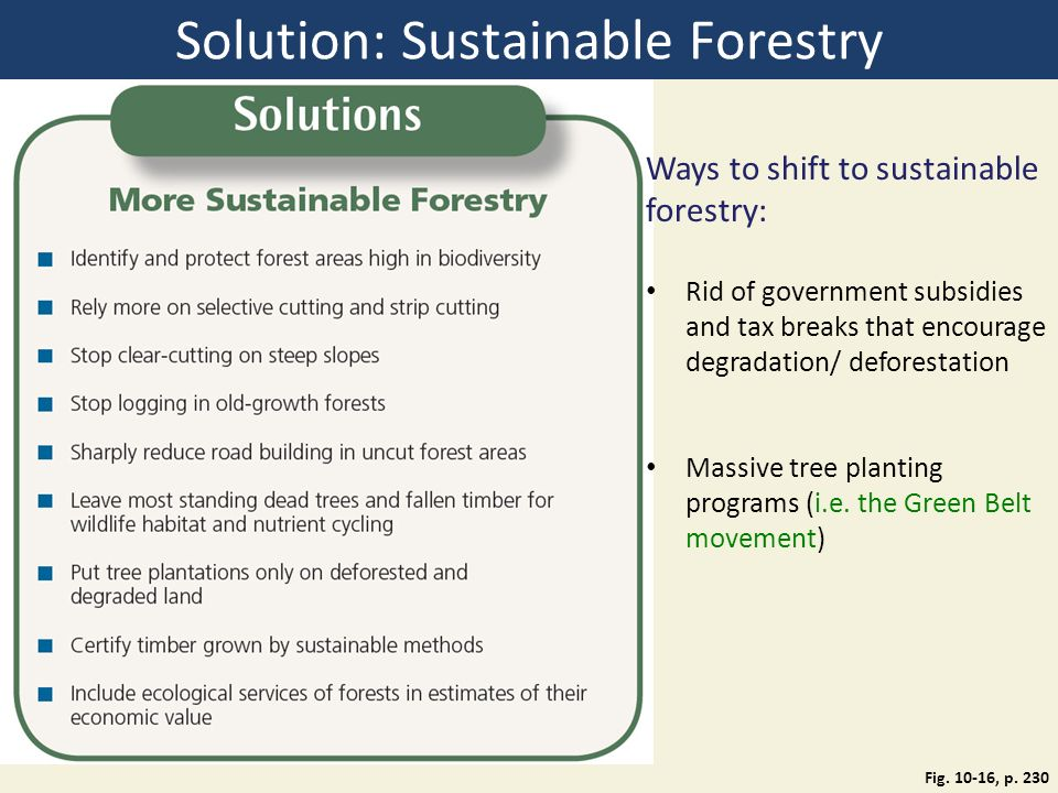 Solution: Sustainable Forestry Fig. 10-16, p.