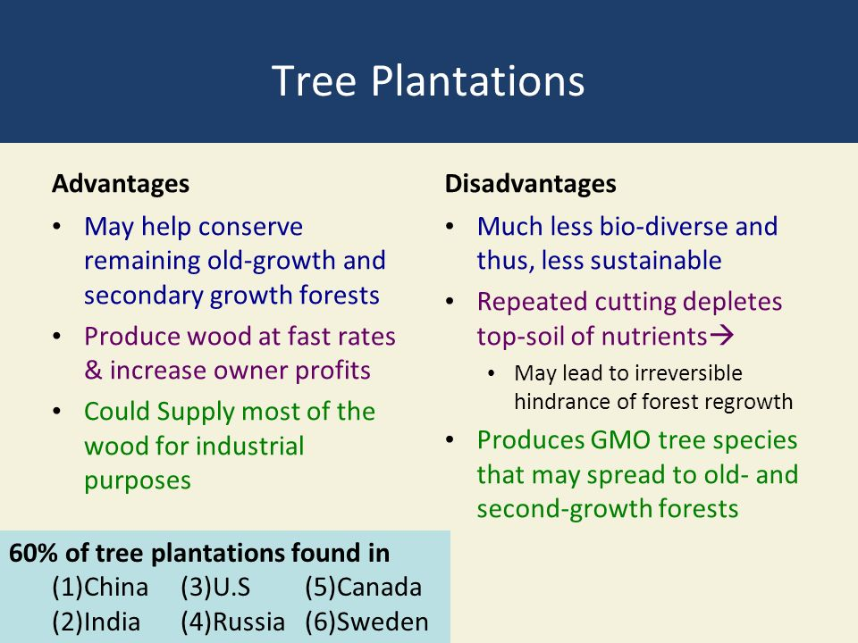 Tree Plantations Advantages May help conserve remaining old-growth and secondary growth forests Produce wood at fast rates & increase owner profits Could Supply most of the wood for industrial purposes Disadvantages Much less bio-diverse and thus, less sustainable Repeated cutting depletes top-soil of nutrients  May lead to irreversible hindrance of forest regrowth Produces GMO tree species that may spread to old- and second-growth forests 60% of tree plantations found in (1)China(3)U.S (5)Canada (2)India(4)Russia (6)Sweden