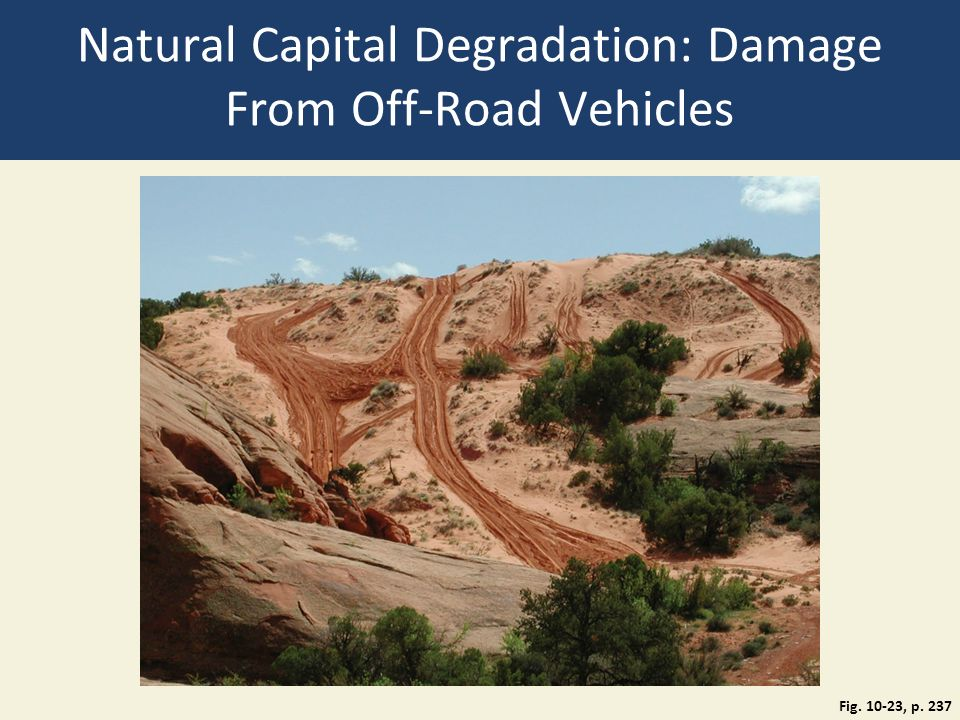 Natural Capital Degradation: Damage From Off-Road Vehicles Fig. 10-23, p. 237