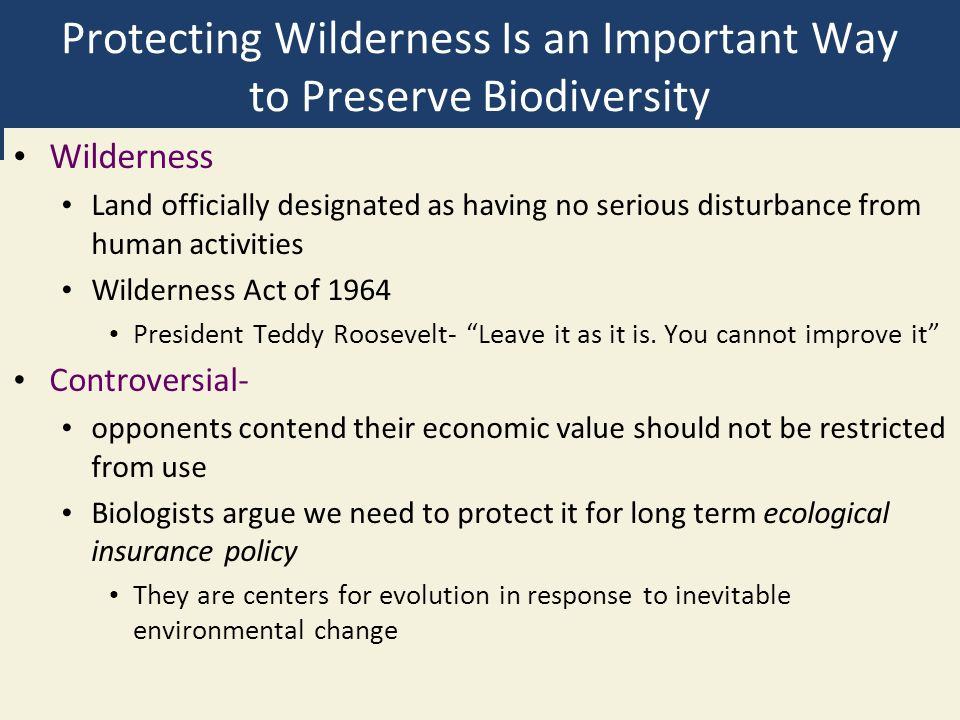 Protecting Wilderness Is an Important Way to Preserve Biodiversity Wilderness Land officially designated as having no serious disturbance from human activities Wilderness Act of 1964 President Teddy Roosevelt- Leave it as it is.