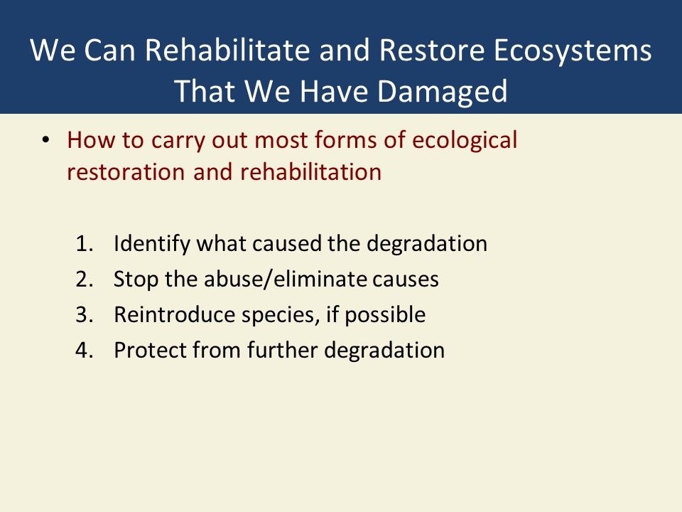 We Can Rehabilitate and Restore Ecosystems That We Have Damaged How to carry out most forms of ecological restoration and rehabilitation 1.Identify what caused the degradation 2.Stop the abuse/eliminate causes 3.Reintroduce species, if possible 4.Protect from further degradation