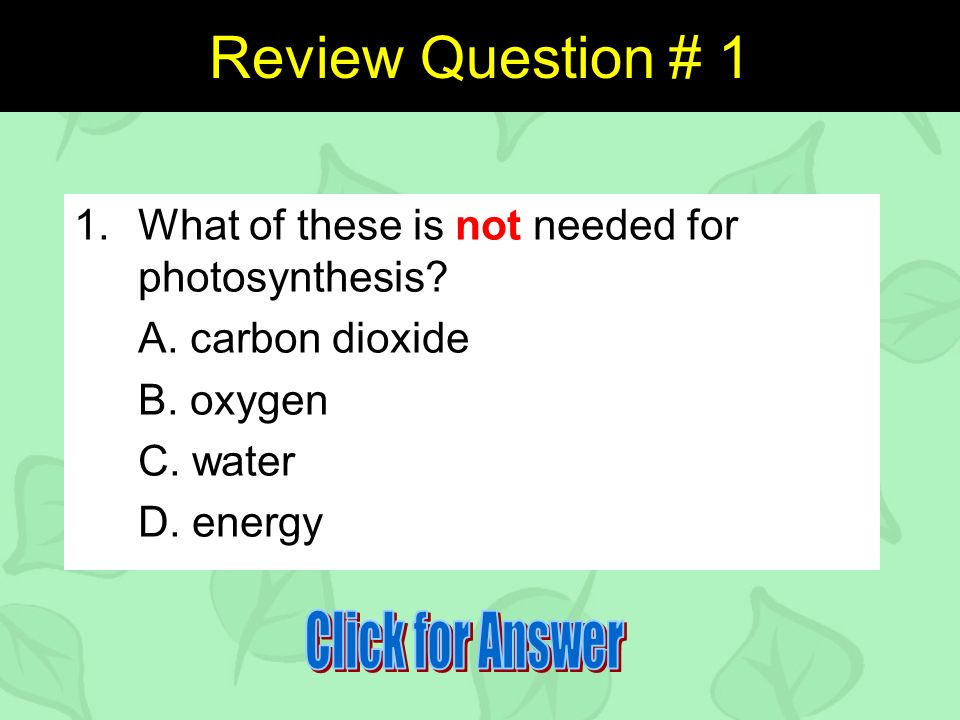 Review Question # 1 1.What of these is not needed for photosynthesis.